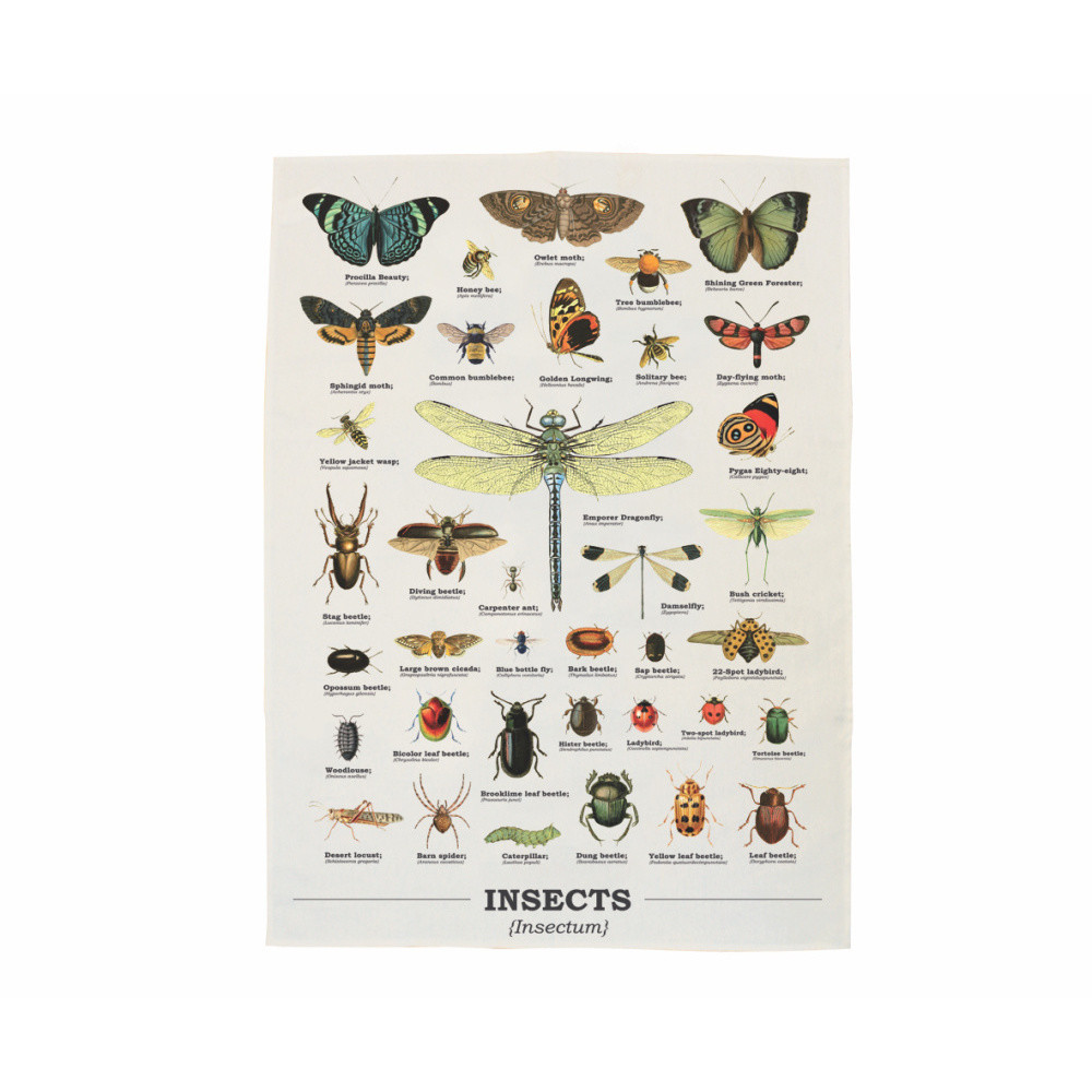 Utierka Gift Republic Insects