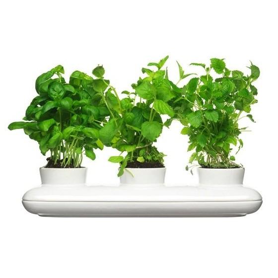 Kvetináč na bylinky Sagaform Trio Herb