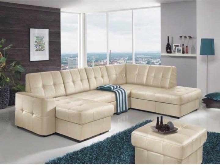 Rozkladacia rohová sedacia súprava v tvare U s úložným priestorom, P prevedenie, koža YAK M6901, TREK SYSTÉM U