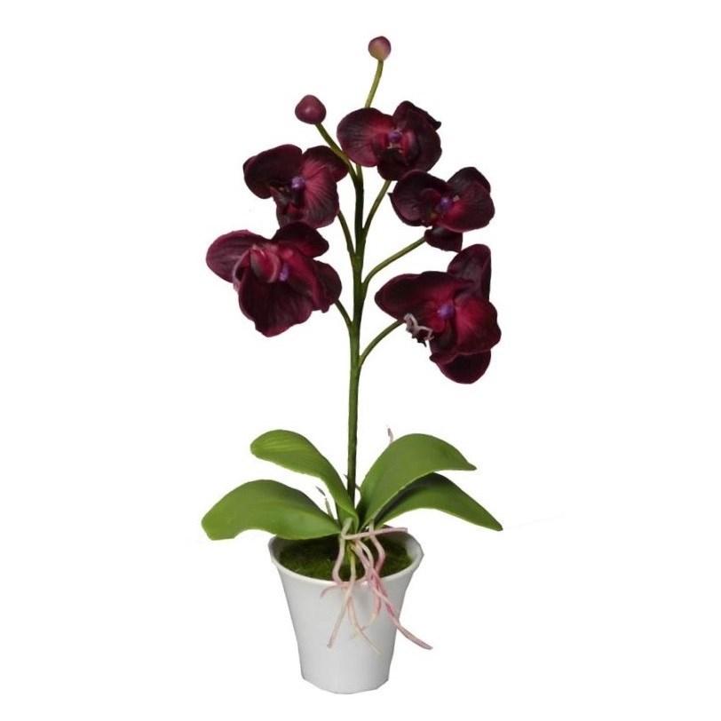 Umelá Orchidea v kvetináči tmavočervená, 35 cm