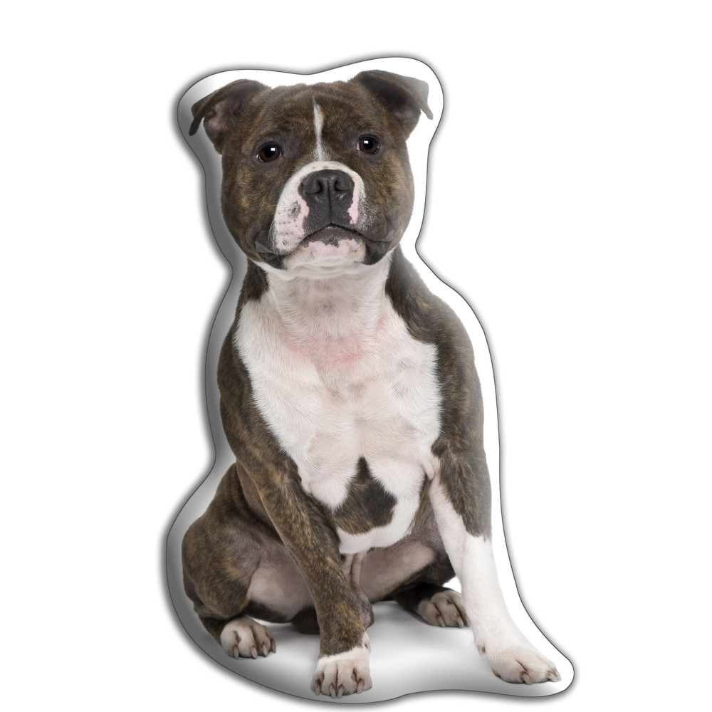 Vankúšik Adorable Cushions Stafordšírsky bulteriér