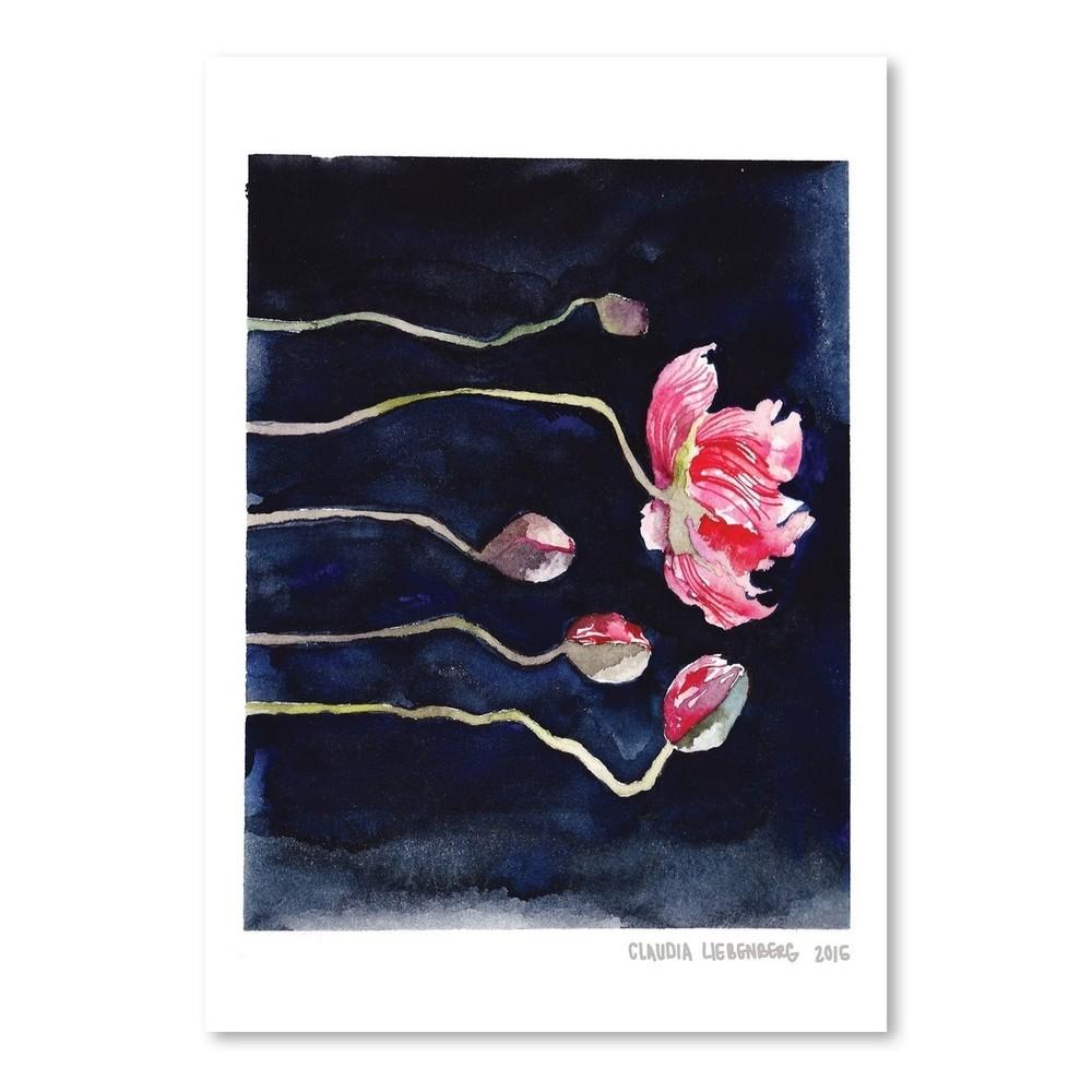 Plagát Blooms on Black III, 30x42 cm