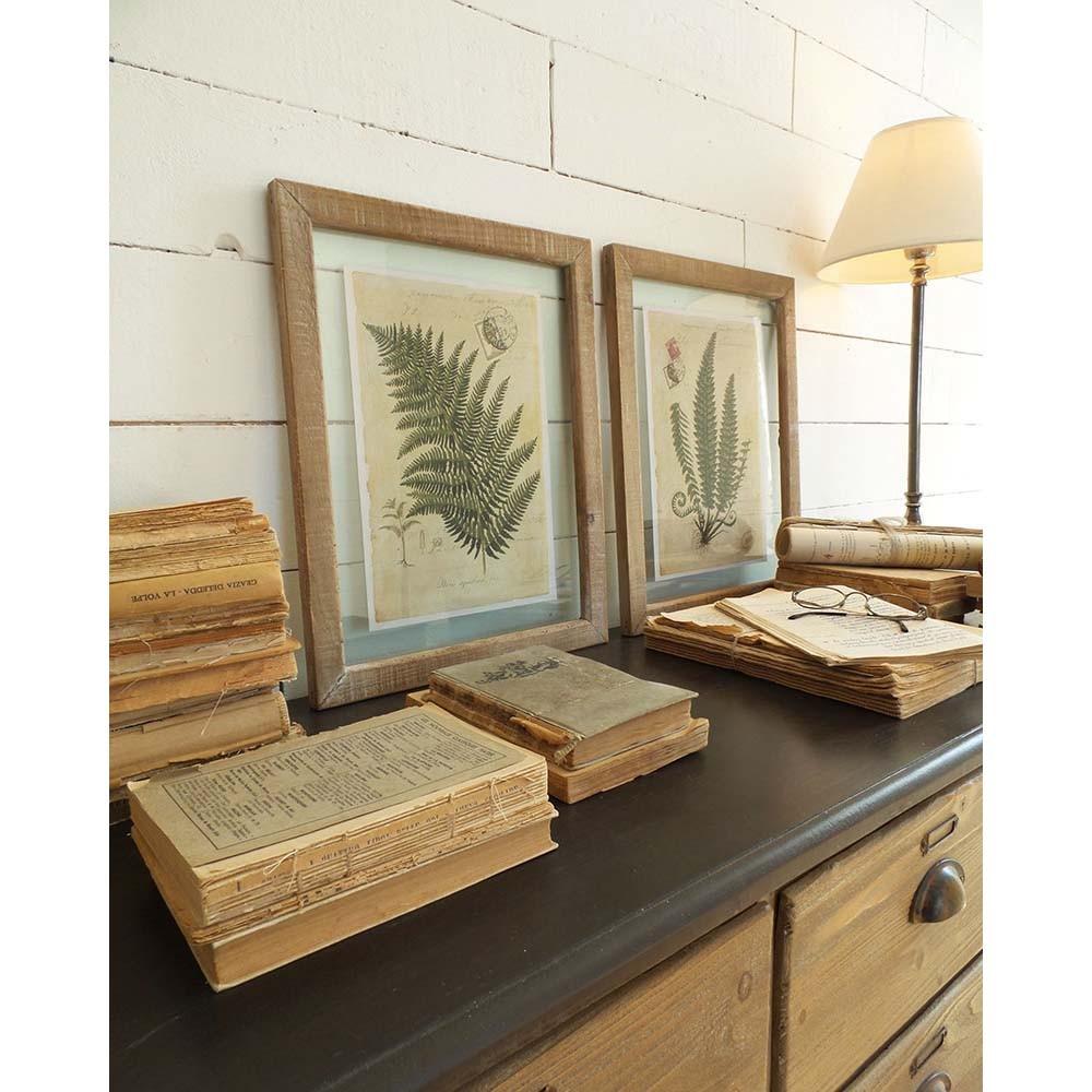 Set 2 obrazov v drevených rámoch Orchidea Milano Boitanique