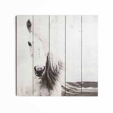 Drevený obraz Graham & Brown Horse,50x50cm