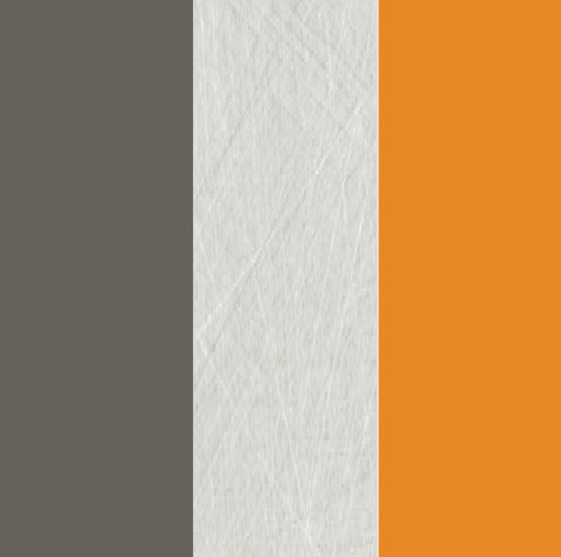 Rohová šatníková skriňa Alien alis 03   Farba: Oranžová