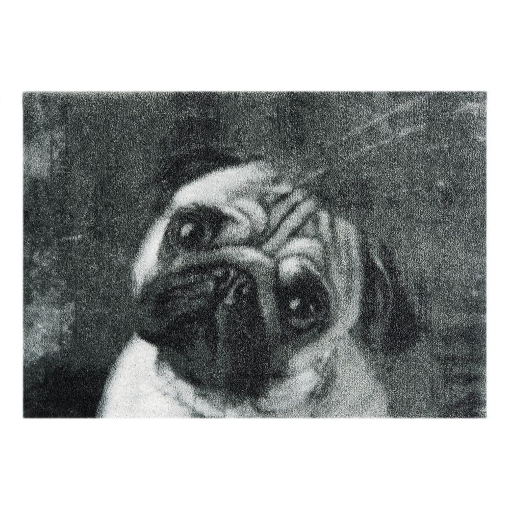 Sivá rohožka Mint Rugs  StateMat Dog, 50x75cm