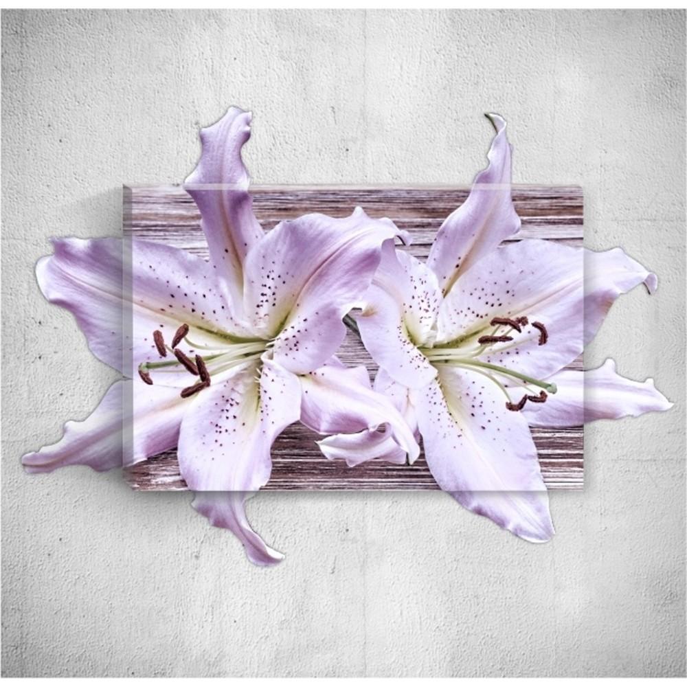 Nástenný 3D obraz Mosticx Two Flowers, 40×60 cm