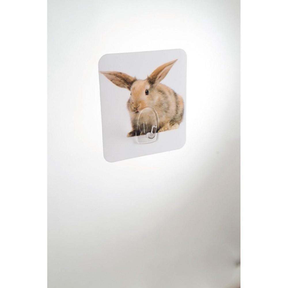 Nástenný háčik Compactor Magic Rabbit