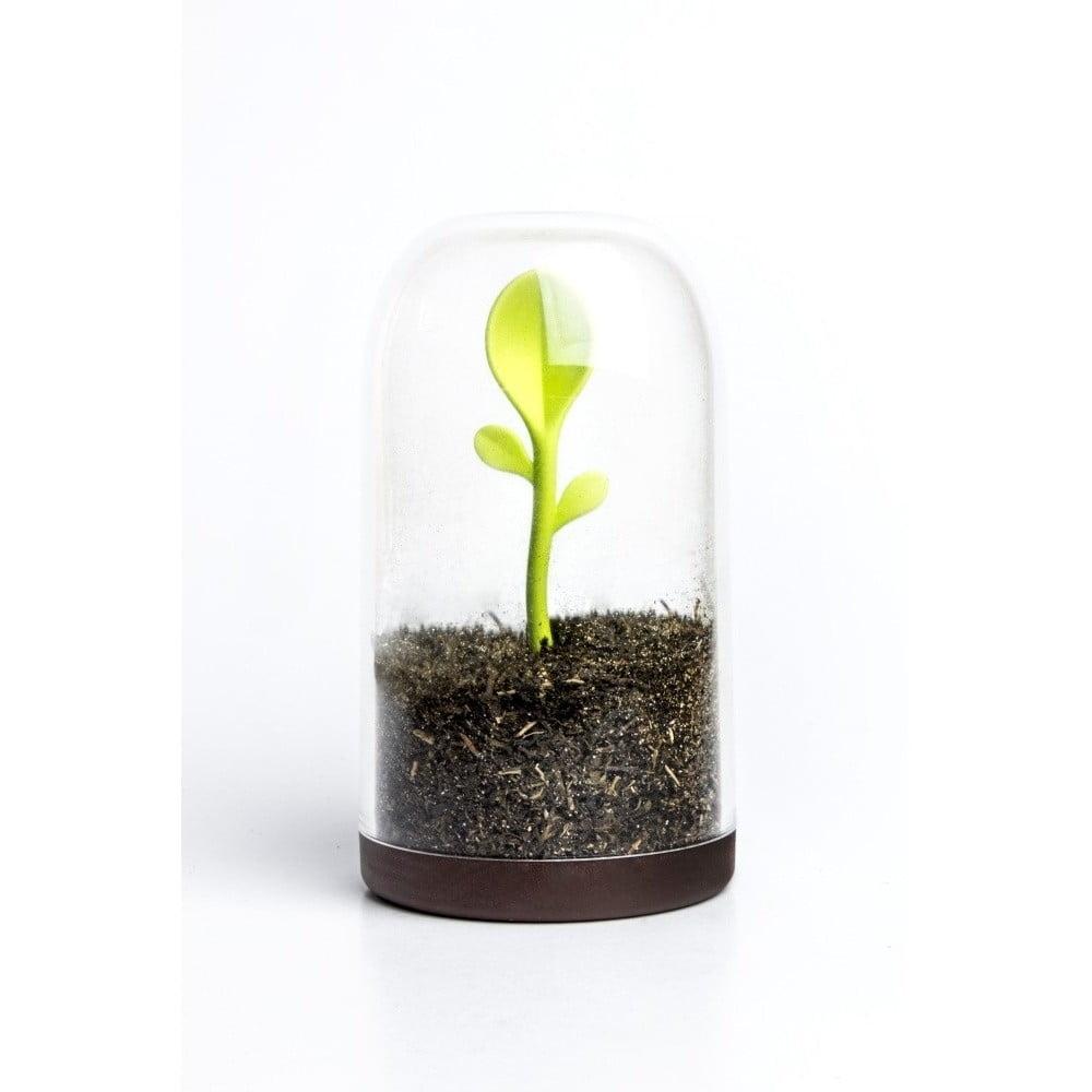 Dóza s lyžičkou Qualy Sprout Jar