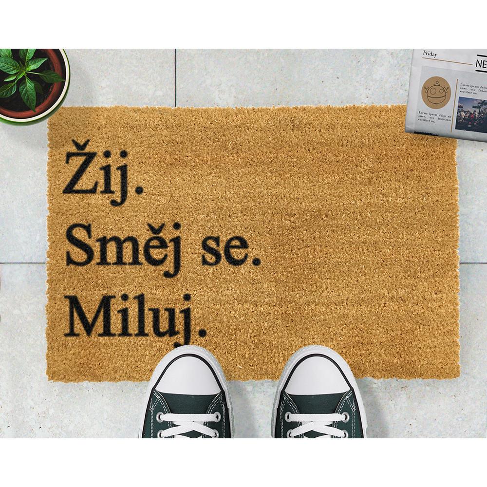 Rohožka Artsy Doormats Žij a miluj, 40x60cm