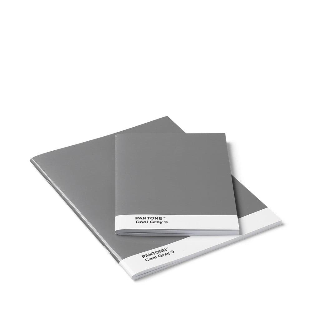 Sada 2 sivých zápisnikov Pantone