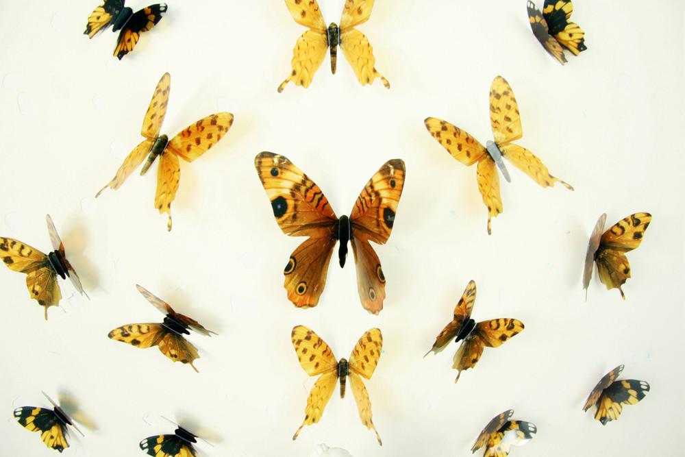 Sada 18 adhezívnych 3D samolepiek Fanastick Butterflies Yellow