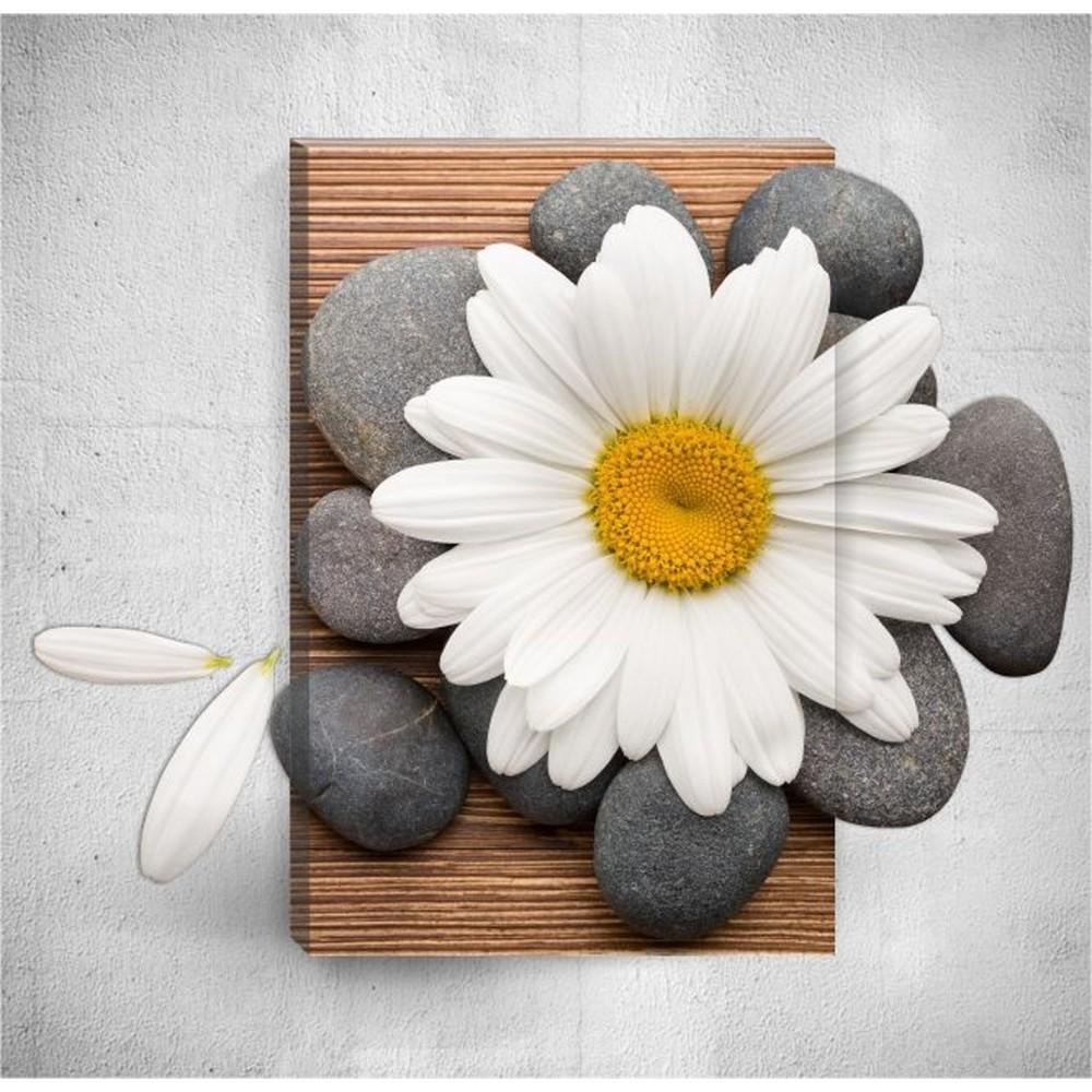 Nástenný 3D obraz Mosticx Daisy With Pebbles, 40×60 cm