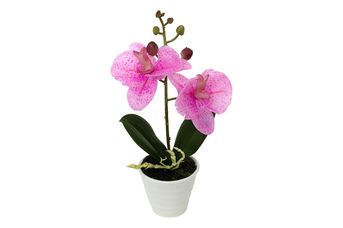 Orchidea v keramickom kvetináči, sv. ružová, ORC720919