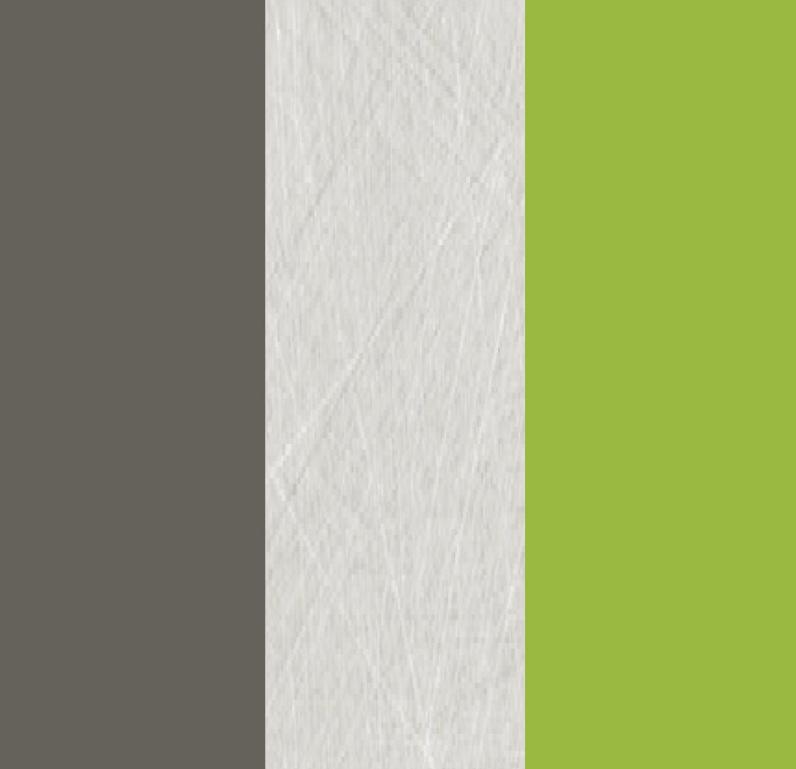 Šatníková skriňa Alien alis 02   Farba: Zelená