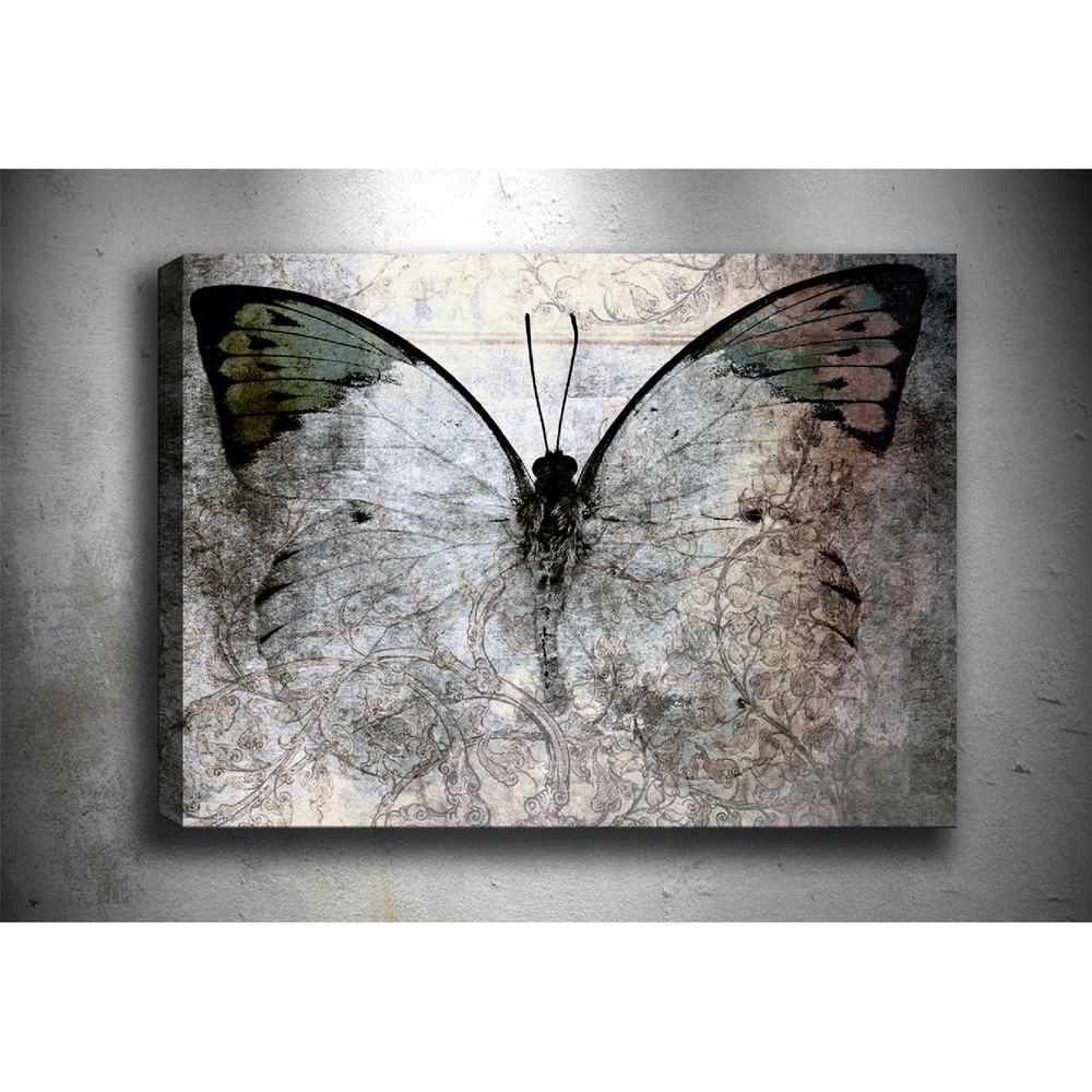 Obraz Tablo Center Fading Butterfly, 70 × 50 cm