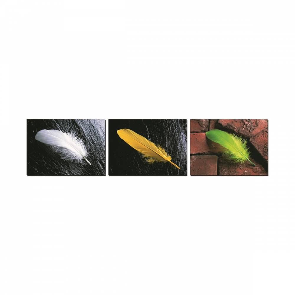 Autronic Trojdielny obraz Feather, OBK021