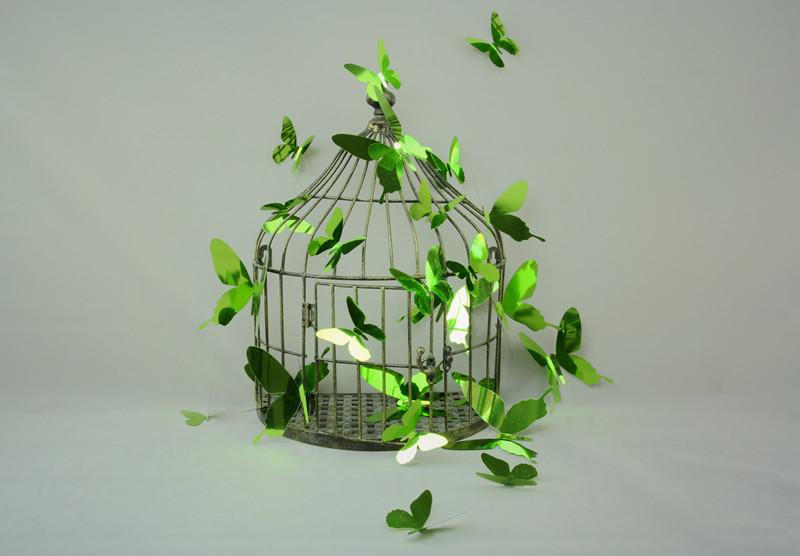 Sada 12 adhezívnych 3D samolepiek Fanastick Butterflies Green
