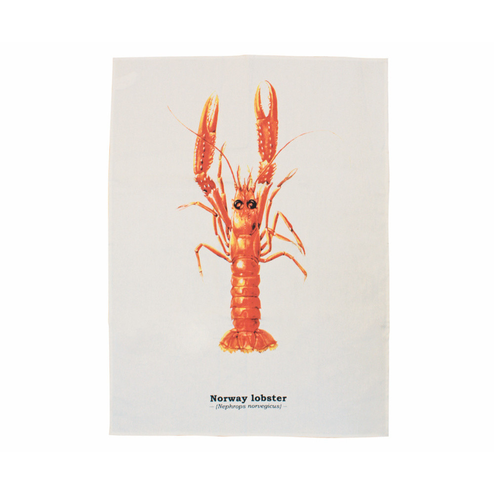 Utierka Gift Republic Lobster